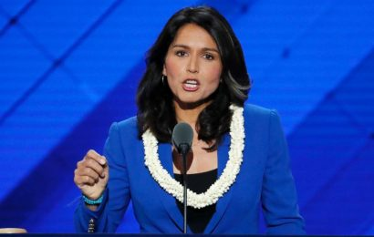 Tulsi Gabbard kills neocon New World Order bloodbath in 30 seconds