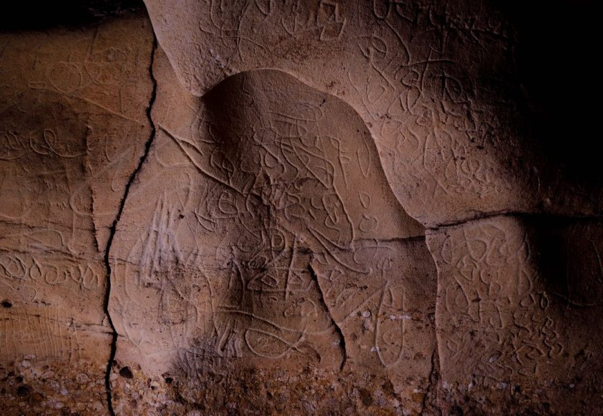 15,000 years old carvings of scores of animals unearthed in Spanish cave