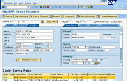 SAP má potíže s prodejem svého předraženého softwaru
