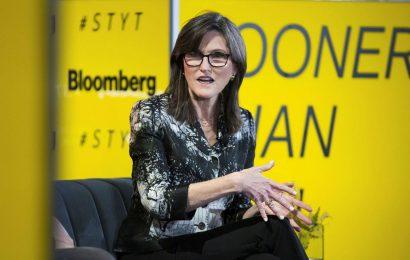 Cathie Wood Warns Of Stock Market Correction
